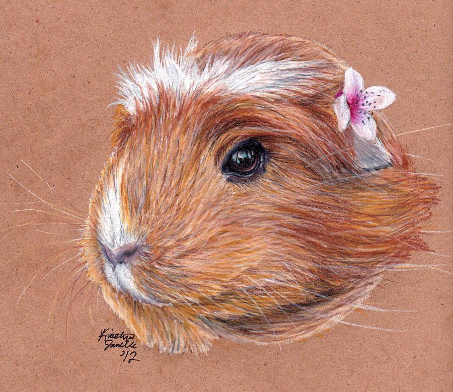 Commission - Hazel by KristynJanelle
