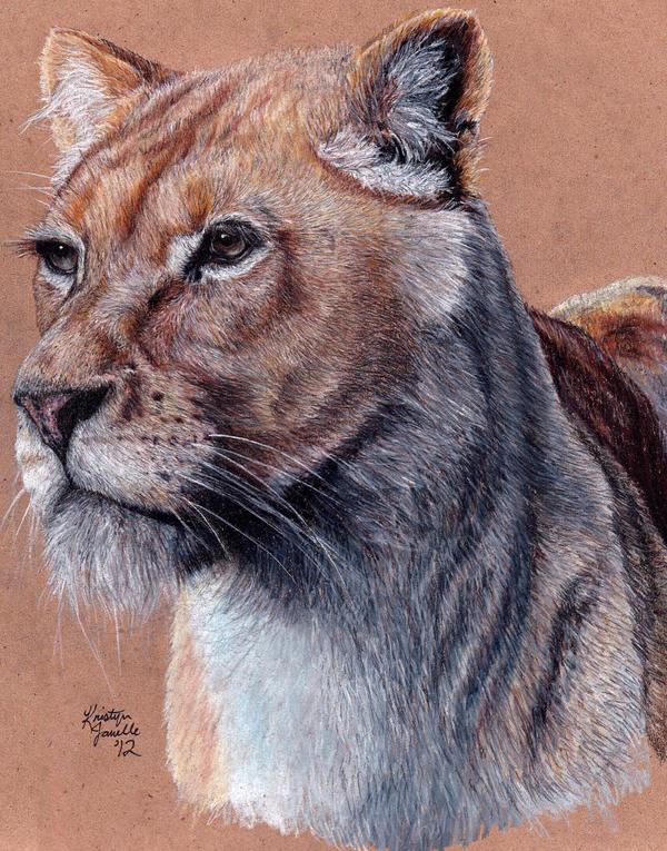 Lioness by KristynJanelle