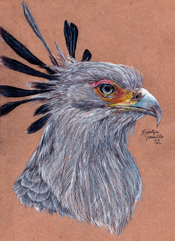 Secretary Bird by KristynJanelle