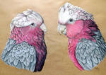Commission - Two Galahs