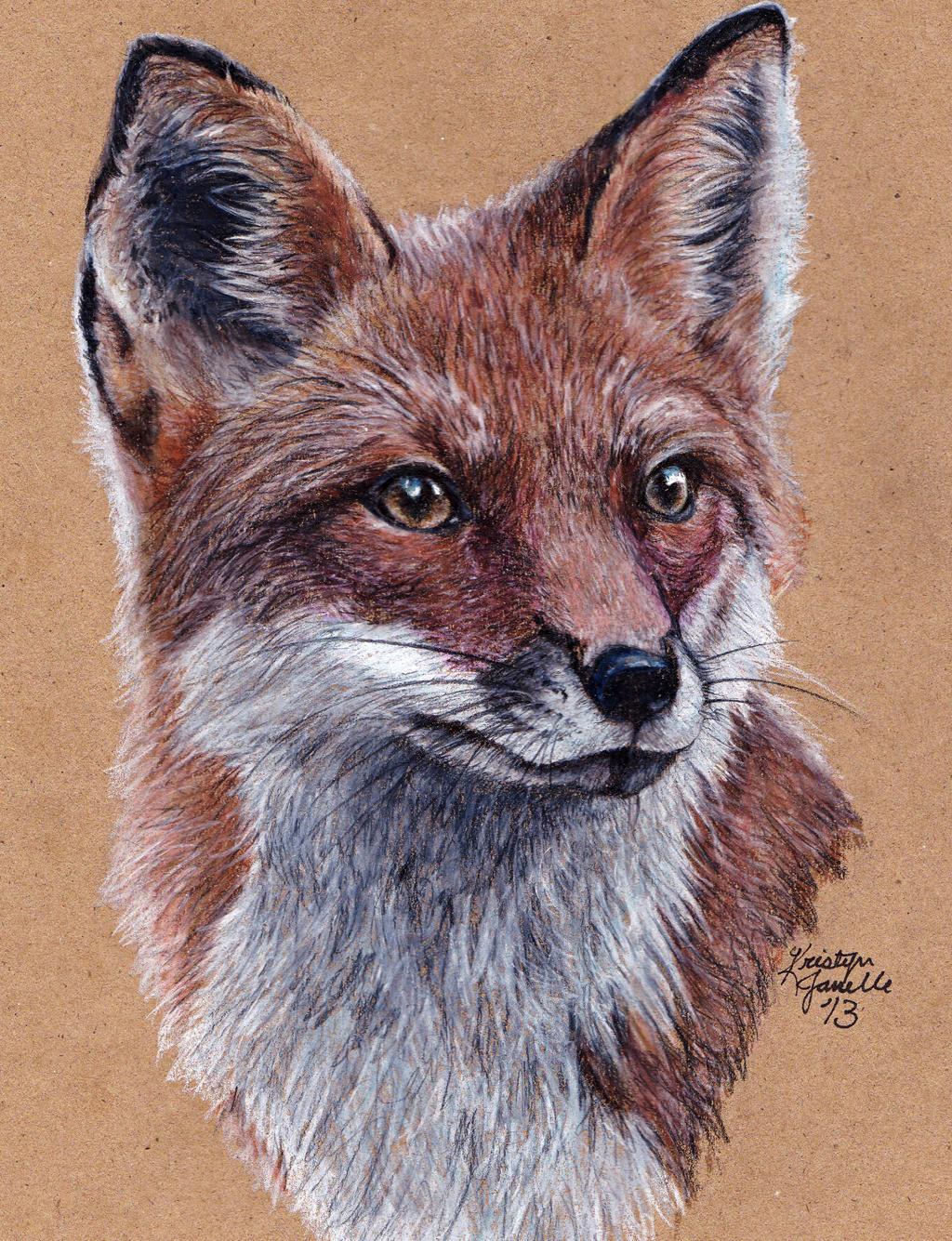 Fox by KristynJanelle