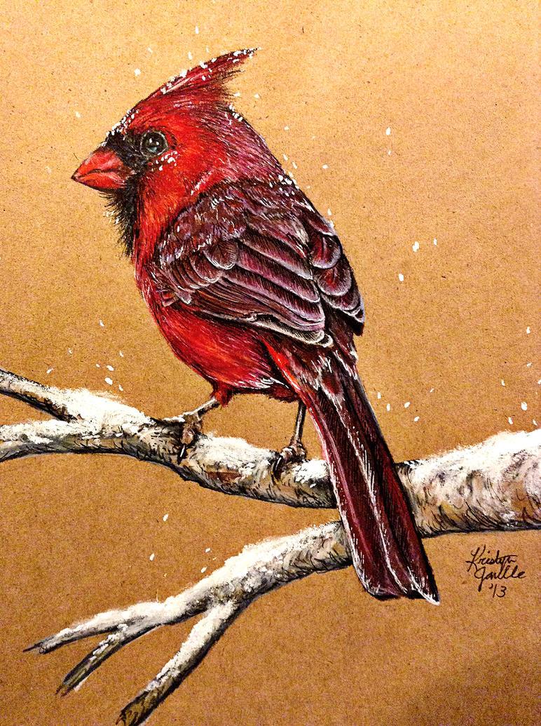 Cardinal by KristynJanelle