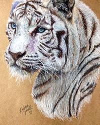 White Tiger by KristynJanelle