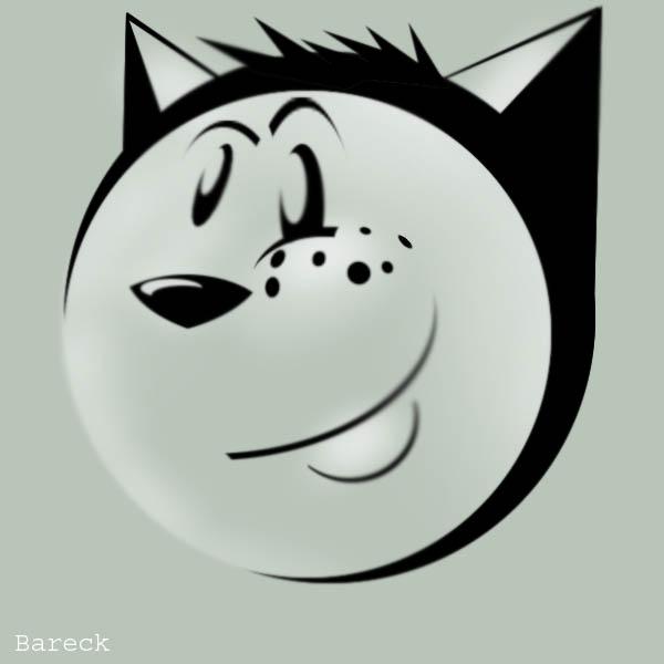 Bareck's Profile Picture