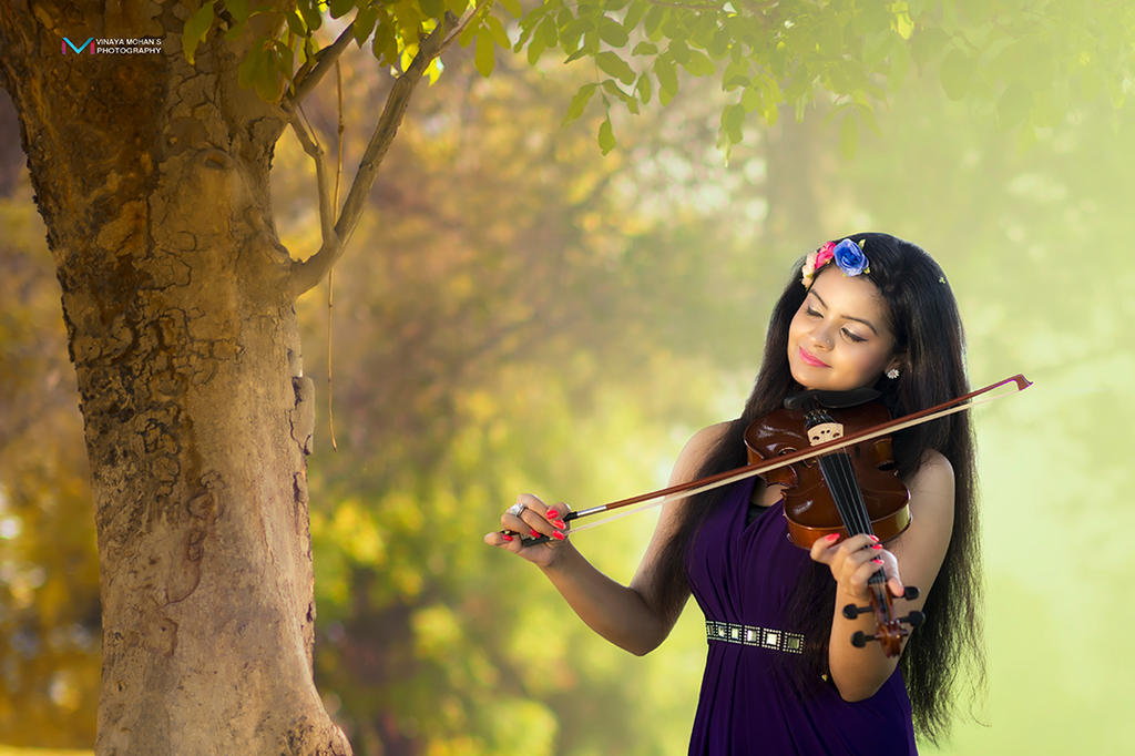 Violin by vinayan