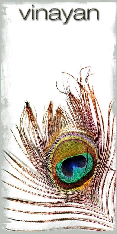 vinayan's Profile Picture