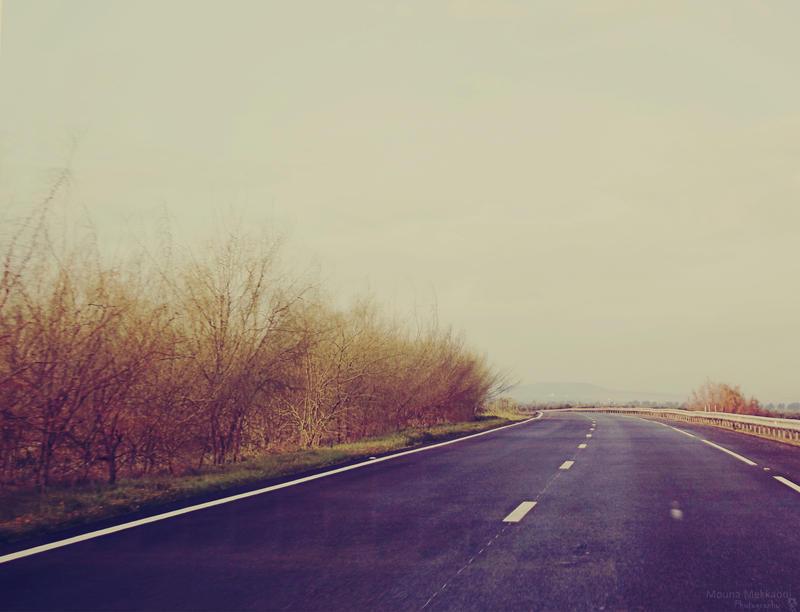 Coming Home. by Mouna-Mekkaoui