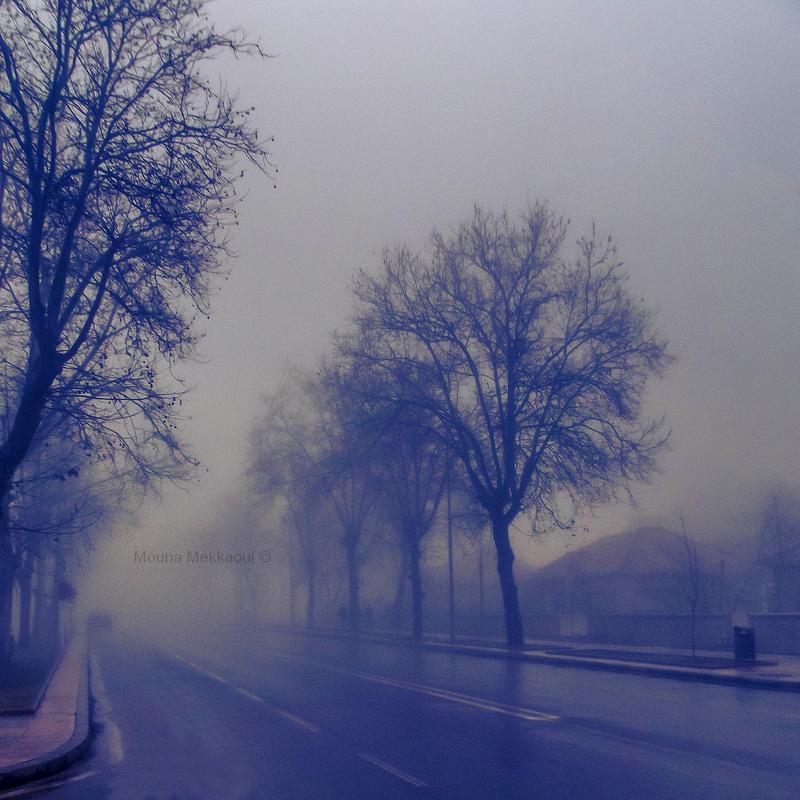 the mist by Mouna-Mekkaoui