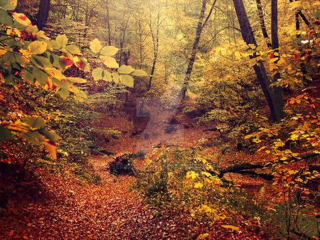 Autumn Walk - ii
