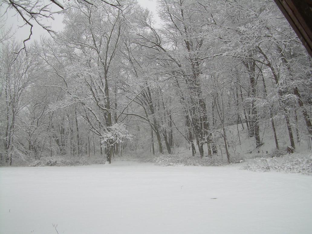Winter Walk 20 by TEi-Has-Pants