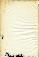 Paper texture 035 by LisaGorska