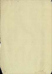 Paper texture 049 by LisaGorska