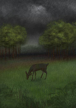 2020.04.21: Forest creature eating