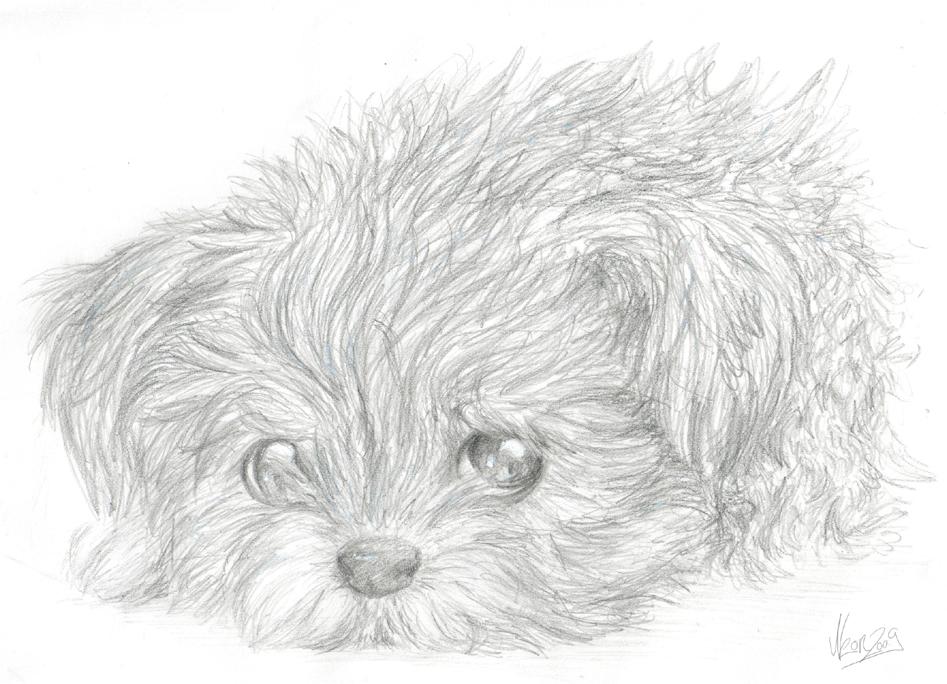 Sad Puppy Drawi...