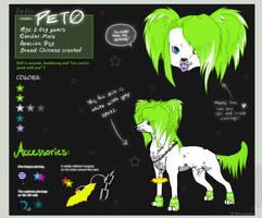 Pet0 ref. sheet by neonspider