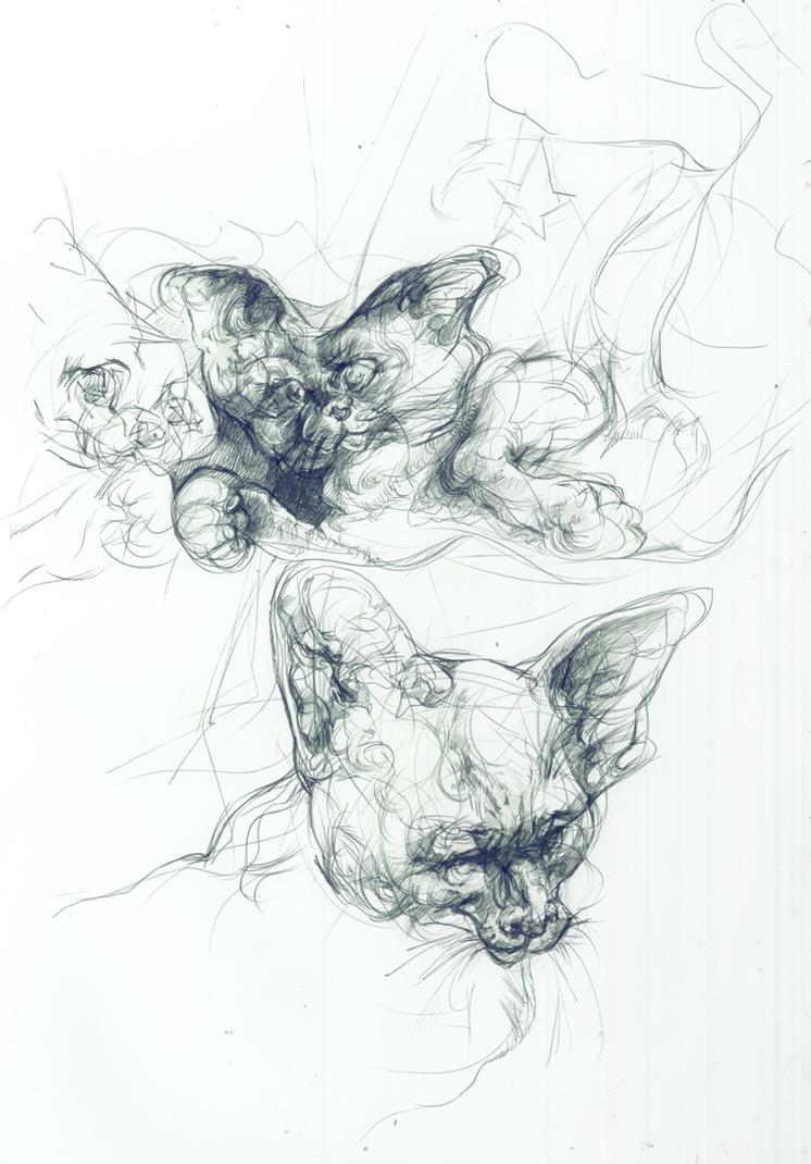 Falling Mirror Cats by ChloeC