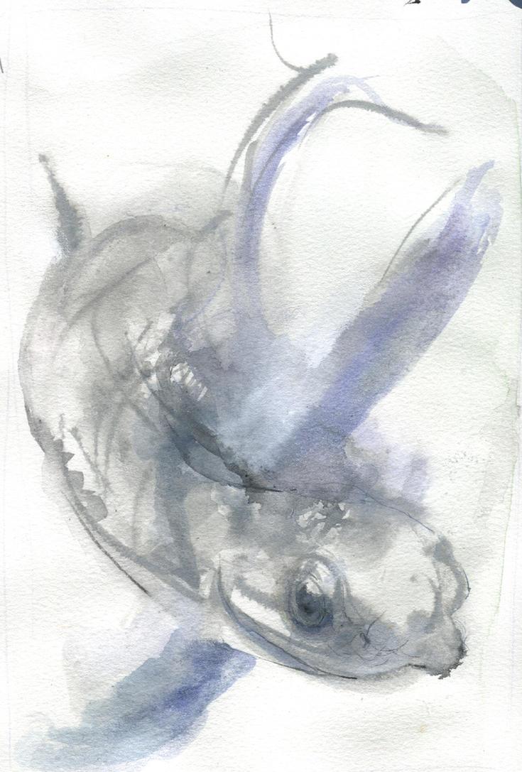 friend grey snake by ChloeC
