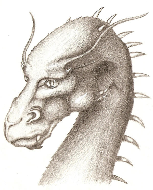 an analysis of eragon In defense of the inheritance cycle posted on april 24, 2014 by madameace as i pointed out to lady geek girl the other day, more than a month has passed again since i last addressed this topic, so it's time to revisit my favorite series.