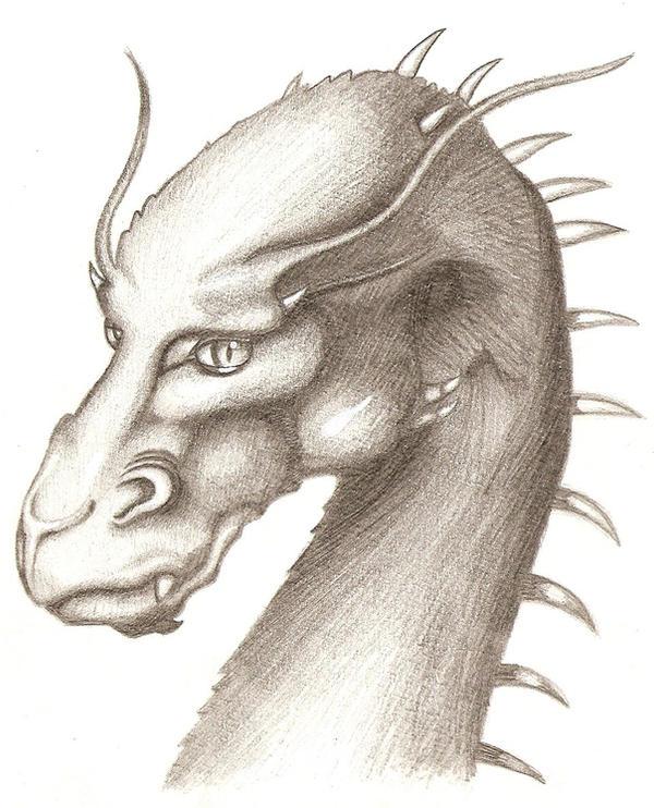 Saphira Sketch by SonARTic on DeviantArt