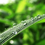 sunny rainy