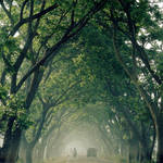 the green tunnel by Aparazita-R