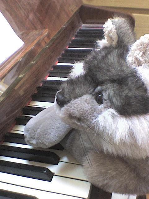 mijo y mi piano
