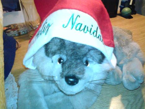 my christmas hat