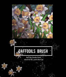 [ brush and stock ] Daffodils