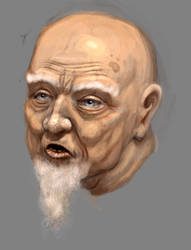 Character Head Study No.2 by RougeSpark