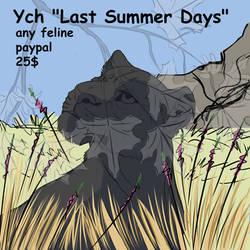 Ych 'Last Summer Days' (open)