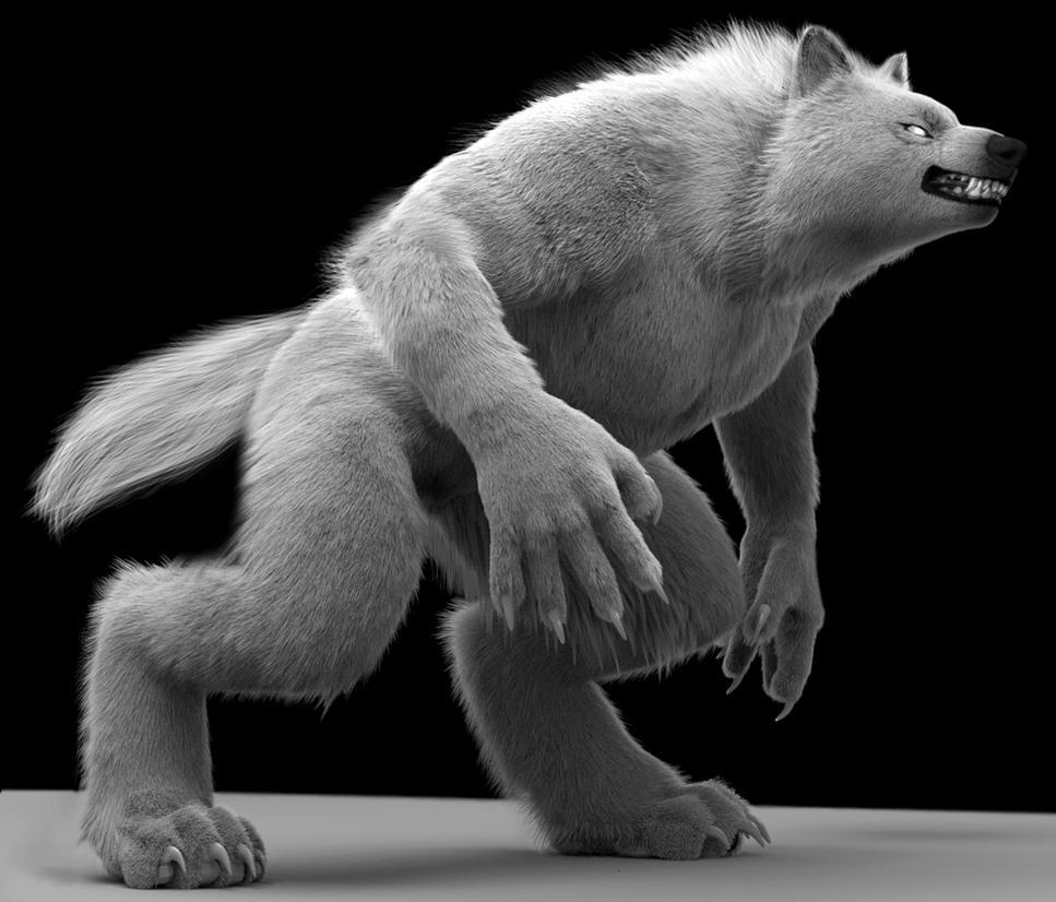 WhiteWolf by neowolf