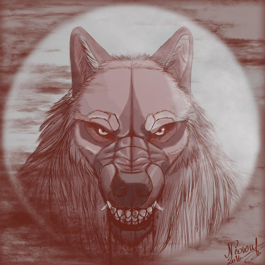 cellshading Werewolf portrait Yudy by neowolf