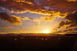 Sunset on the way to Te Anau by kulesh