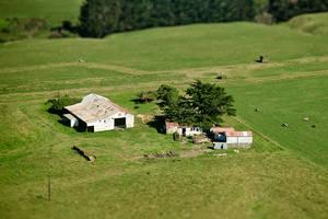 New Zealand Farm by kulesh