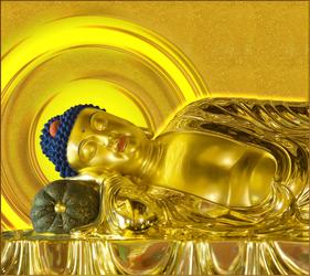 A Di Da Phat Buddha 31