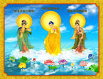 A Di Da Phat Quan The Am Guanyin Buddha 864