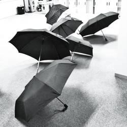Rain season by taazaa