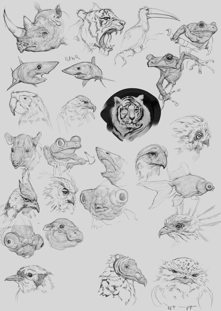 Random - Animal Studies by p00se2