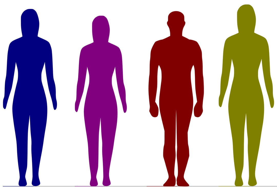 Crypton Vocaloids Height Comaprison Reference by K0K0R039