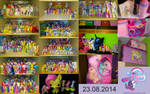 My collection 23 08 2014