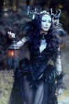 Gothic Fantasy Witch Feathers Costume