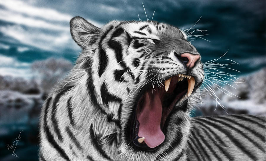 painting white tiger by Ineer on DeviantArt