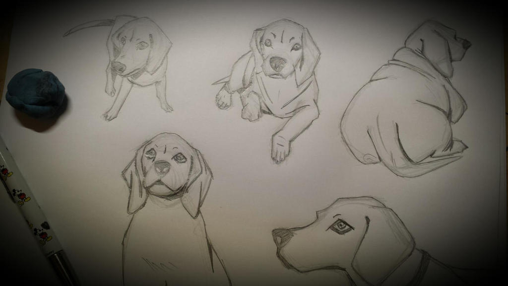 Cani Dogs by MaChI83