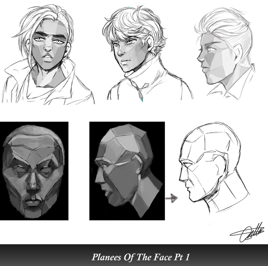 Planes Of The Face Study. by RozuBurakku