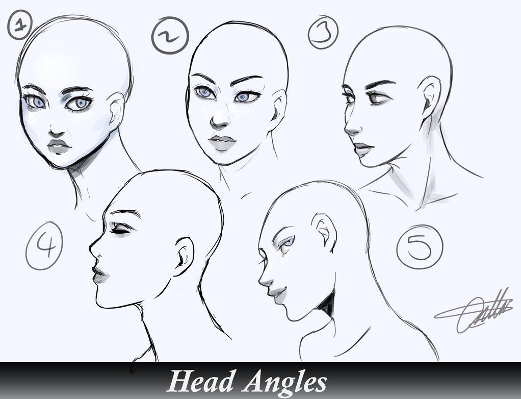 Head Angles Study. by RozuBurakku