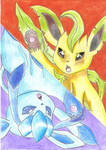 Leafeon and Glaceon Together