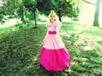 Princess Toadstool 'Motaku 2014'