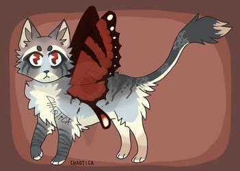 Catterfae #2 - Kain
