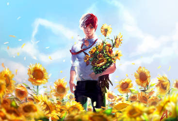 Shouto Todoroki: Under the sun by borammy