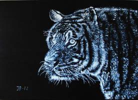 Tiger by ChinaJB